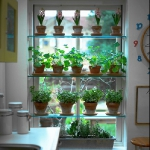 window-shelves-ideas-for-plants1-1.jpg
