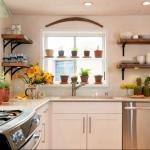window-shelves-ideas-for-plants1-5.jpg