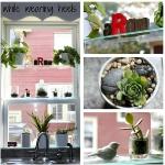 window-shelves-ideas-for-plants1-8.jpg