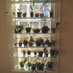 window-shelves-ideas-for-plants1-9.jpg