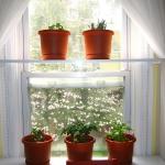 window-shelves-ideas-for-plants2-2.jpg