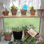 window-shelves-ideas-for-plants2-6.jpg