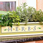 windowsill-decorating-ideas-plants4.jpg
