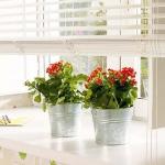 windowsill-decorating-ideas-plants9.jpg