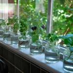 windowsill-decorating-ideas-similar-items4.jpg
