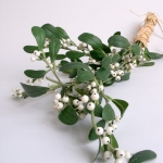 winter-mistletoe-home-decoration1.jpg