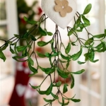 winter-mistletoe-home-decoration3.jpg