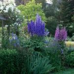 wonderful-nooks-in-garden14.jpg