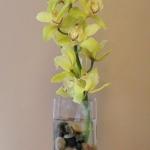 wonderful-orchids-ideas2-15.jpg