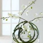 wonderful-orchids-ideas3-8.jpg