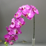 wonderful-orchids-ideas3-24.jpg