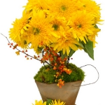 yellow-flowers-centerpiece-ideas-solo7.jpg
