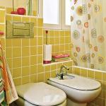 zoning-divider-in-bathroom-tour2-2.jpg