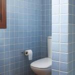 zoning-divider-in-bathroom-tour5-2.jpg