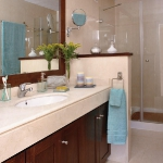 zoning-divider-in-bathroom1-1.jpg