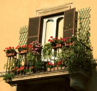 balcon-flowers2