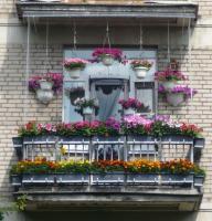 balcon-flowers7