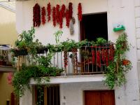 balcon-flowers9