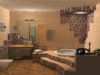 bath-construct22