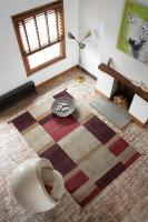 rugs-ideas12