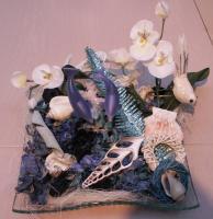 dry-flower-combo-angel14