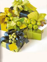 gift-wrapping-book19