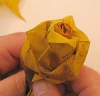 DIY-automn-rose9
