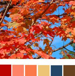 fall-palette3