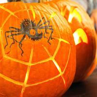 halloween-pumpkin14
