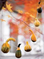 mini-pumpkins-ideas7