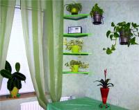 plant-composition15