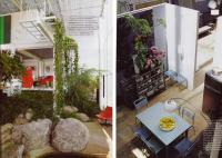 plant-composition17