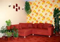 plant-composition6