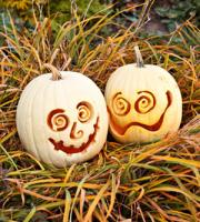 pumpkin-decor-carving14