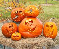pumpkin-decor-carving15