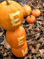 pumpkin-decor-carving3
