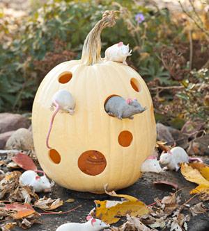 Творческий украшения тыквы на Хэллоуин.