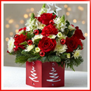 winter-flowers02