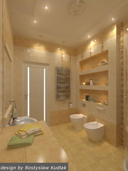 project-bathroom-constructions2