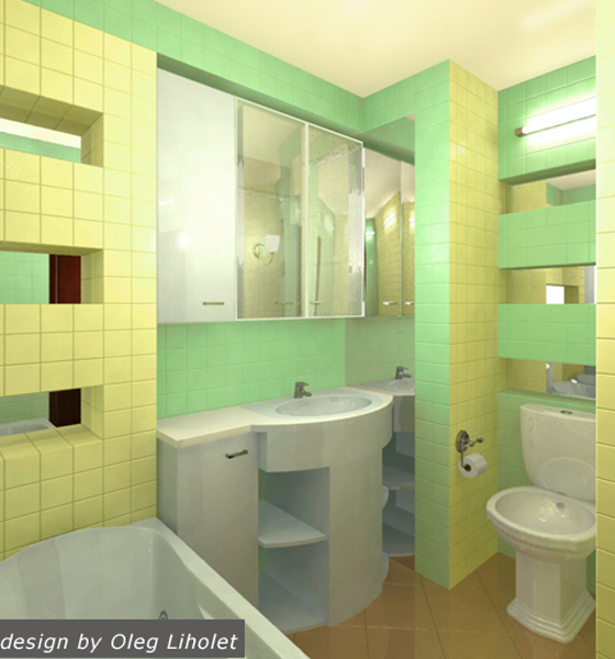 project-bathroom-constructions3