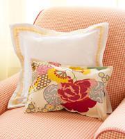 creative-pillows-upgrade-other6
