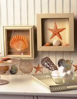 eco-style-ideas-seashell4