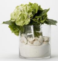 eco-style-ideas-seashell5