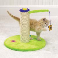 pets-furniture-cats11