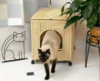 pets-furniture-cats14