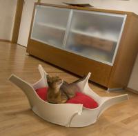 pets-furniture-cats25