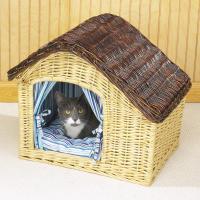 pets-furniture-cats26