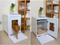 pets-furniture-cats39