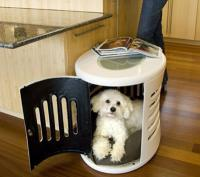 pets-furniture-dogs12