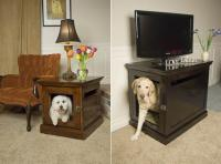 pets-furniture-dogs13